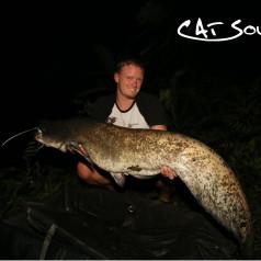 Cat-Sounder Wels